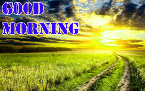 Good Morning Images wallpaper photo download hd