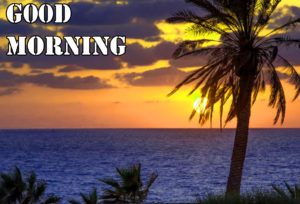 Good Morning Images wallpaper pictures free hd