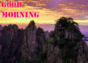 Good Morning Images pictures pics free download