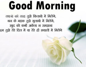 Hindi Shayari Good Morning images wallpaper photo pics for best fiend