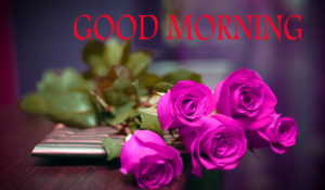 Love Good Morning Images photo wallpaper for whatsapp