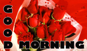 Romantic Good Morning Images pics photo free hd