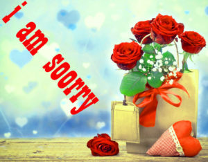 Sorry Images photo wallpaper download