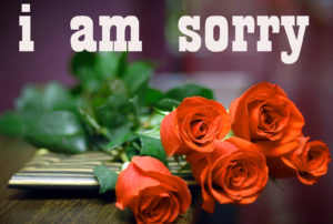 Sorry Images photo wallpaper hd