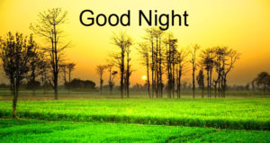 Good Night Images For Him & Her pics photo free hd