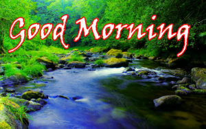 Nature Good Morning Images pictures pics download