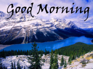 Nature Good Morning Images photo pics free download