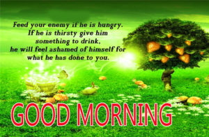 Tamil Good Morning Images pictures photo free download