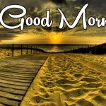 Latest Free Good Morning Wishes Images Pics Photo Pictures Free Download for Whatsapp