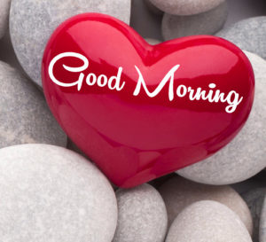 Good Morning All images wallpaper photo hd download