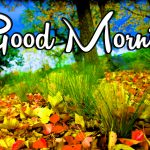 Latest 1256+ Good Morning Wallpaper Free Download For Whatsapp Dost