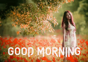 A Very Good Morning Images Wallpaper Download for Facebook
