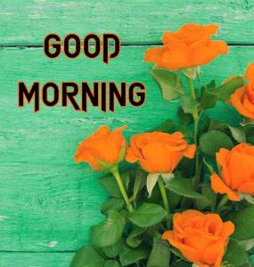 A Very Good Morning Images Pics For Whatsapp