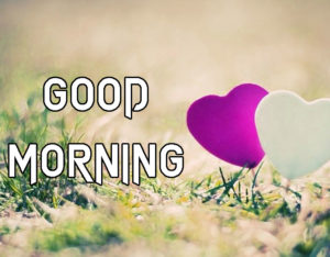 A Very Good Morning Images Pics Free Download for Lover