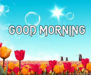 A Very Good Morning Images Pictures HD New