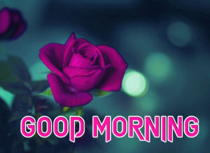 Art Good Morning Images wallpaper photo download