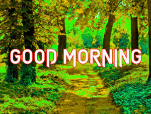 Beautiful Good Morning Images Wallpaper Pics Download & Share