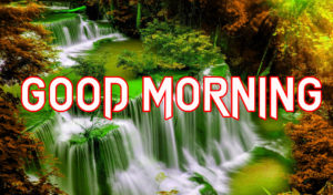 Beautiful Good Morning Images Wallpaper pics Free Download & Share