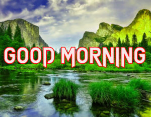 Beautiful Good Morning Images Wallpaper free Download