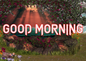 Beautiful Good Morning Images Wallpaper Pics Latest Free New