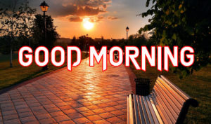 Beautiful Good Morning Images Pics Wallpaper free New