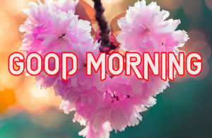 Beautiful Good Morning Images Wallpaper Pic Download