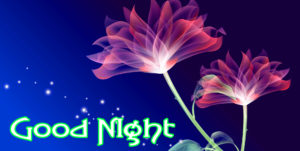 Flower Romantic Good Night Images wallpaper for whatsapp