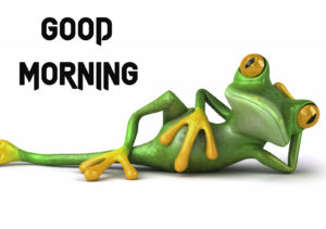 Funny Good Morning Images photo download