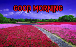 Good Morning All Pics Images pics for facebook