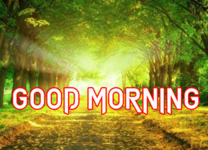 Good Morning All Pics Images photo download