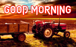 Good Morning All Pics Images picture pics for whatsapp