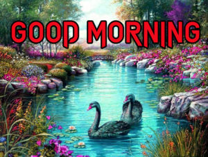 Good Morning All Pics Images photo picture download