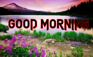 Good Morning All Pics Images pictures wallpaper download