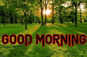 Good Morning All Pics Images pictures photo download