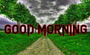 Good Morning All Pics Images photo pics for whatsapp