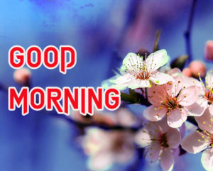 Good Morning All Pics Images wallpaper photo for boyfriend