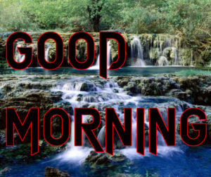 Latest HD Good Morning Images Wallpaper Pics Free New