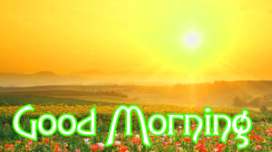 Lover Good Morning Images photo hd download