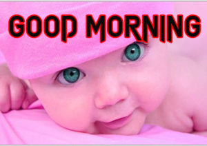 Good Morning Images Wallpaper Pictures for Best Friend Download