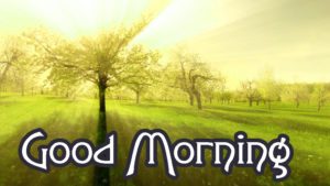 Lover Good Morning Images picture download