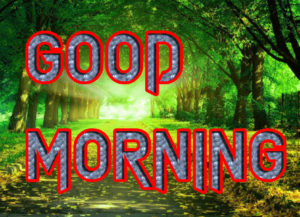 Latest HD Good Morning Images Pics HD With Beautiful Nature