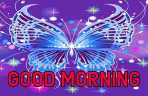 Latest HD Good Morning Images Wallpaper Free