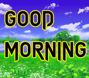 Latest HD Good Morning Images Wallpaper Photo Wallpaper