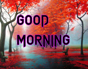 Latest HD Good Morning Images Pics Photo Download