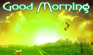 Lover Good Morning Images wallpaper photo download