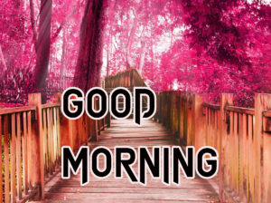 Latest HD Good Morning Images Photo for Facebook