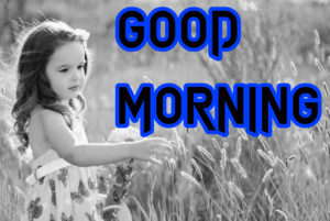 Latest HD Good Morning Images Wallpaper Pics Free Download