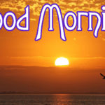 Good Morning Images Pics Wallpaper Pictures For Lover Download & Share