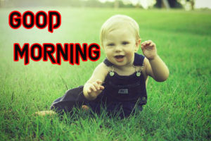Good Morning Images Photo for Day