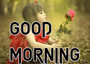 Latest HD Good Morning Images Photo Wallpaper Free New